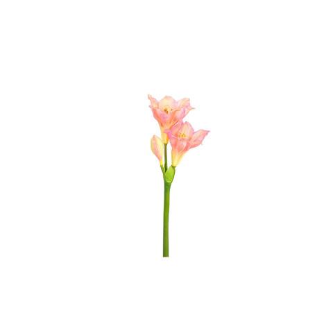 Flower Amar Pink